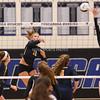 AW Volleyball Loudoun County vs Tuscarora-82