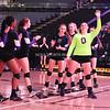 AW Volleyball 2015 5A VHSL State Championship, Potomac Falls-13