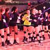 AW Volleyball 2015 5A VHSL State Championship, Potomac Falls-12