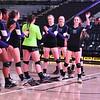 AW Volleyball 2015 5A VHSL State Championship, Potomac Falls-14