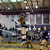 AW Volleyball Briar Woods vs Potomac Falls-4