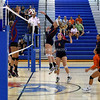 AW Volleyball Briar Woods vs TC Williams-16
