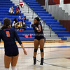 AW Volleyball Briar Woods vs TC Williams-19