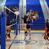 AW Volleyball Briar Woods vs TC Williams-15