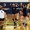 AW Viva Loudoun Volleyball Briar Woods vs  Loudoun County-22