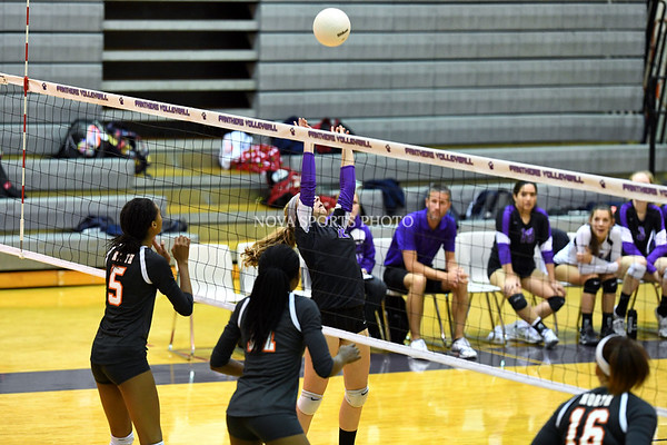 AW Volleyball North Stafford vs Potomac Falls-261