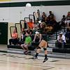 AW Volleyball Patriot v Loudoun Valley-14