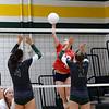 AW Volleyball Patriot v Loudoun Valley-11