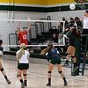 AW Volleyball Patriot v Loudoun Valley-15