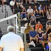 Volleyball Potomac Falls vs Dominion-18