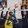 Volleyball Woodgrove vs Loudoun County-19