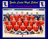 002-Varsity Volleyball Photo framed 2014