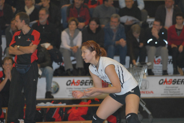 Volleyball 2008/2009