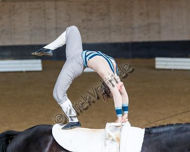 Pferd_Inter_2019_0314_klickvolti