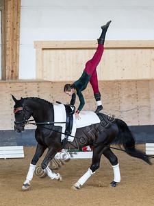 Pferd_Inter_2019_0482_klickvolti