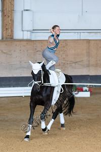 Pferd_Inter_2019_0304_klickvolti