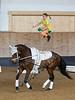 Pferd_Inter_2019_0404_klickvolti
