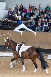 Pferd_Inter_2019_0529_klickvolti