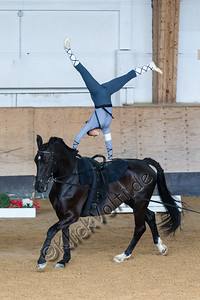 Pferd_Inter_2019_0297_klickvolti
