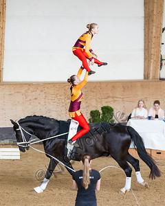 Pferd_Inter_2019_0797_klickvolti