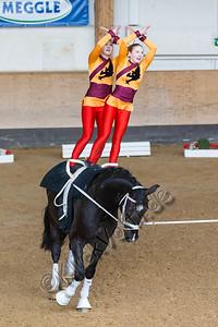 Pferd_Inter_2019_0807_klickvolti
