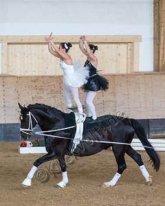 Pferd_Inter_2019_0787_klickvolti