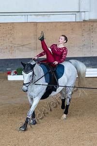 Pferd_Inter_2019_0010_klickvolti