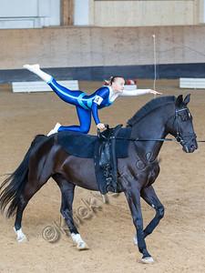 Pferd_Inter_2019_0028_klickvolti