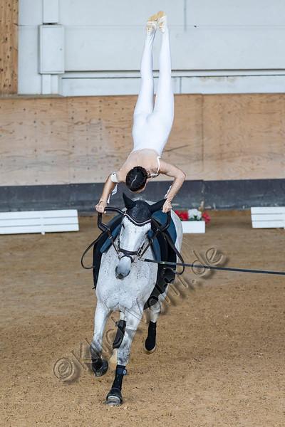 Pferd_Inter_2019_0024_klickvolti