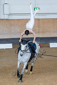 Pferd_Inter_2019_0020_klickvolti