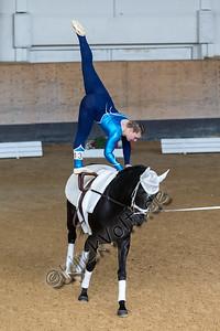 Pferd_Inter_2019_0478_klickvolti