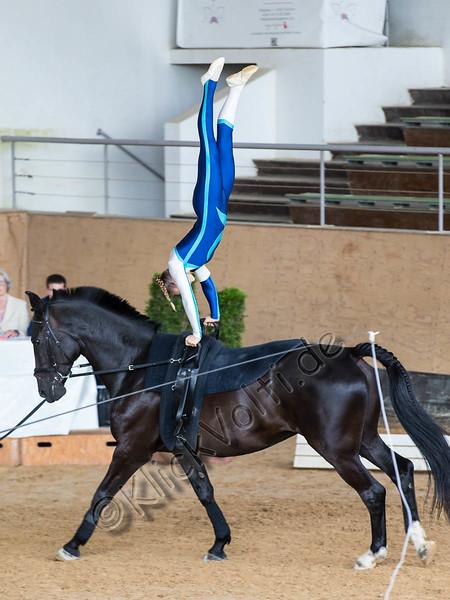 Pferd_Inter_2019_0030_klickvolti
