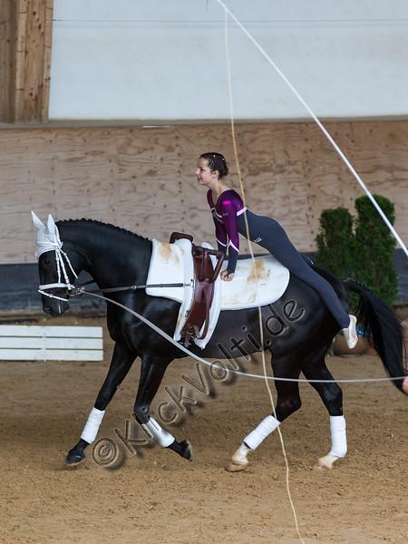 Pferd_Inter_2019_0470_klickvolti