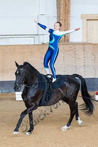 Pferd_Inter_2019_0033_klickvolti