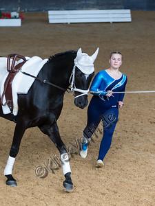 Pferd_Inter_2019_0473_klickvolti