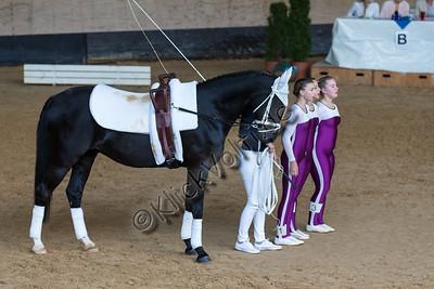 Pferd_Inter_2019_0107_klickvolti