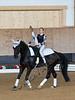 Pferd_Inter_2019_0003_klickvolti
