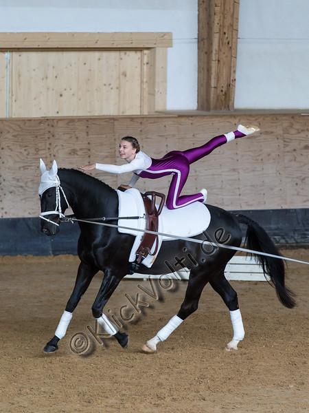 Pferd_Inter_2019_0094_klickvolti