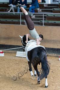 Pferd_Inter_2019_0045_klickvolti