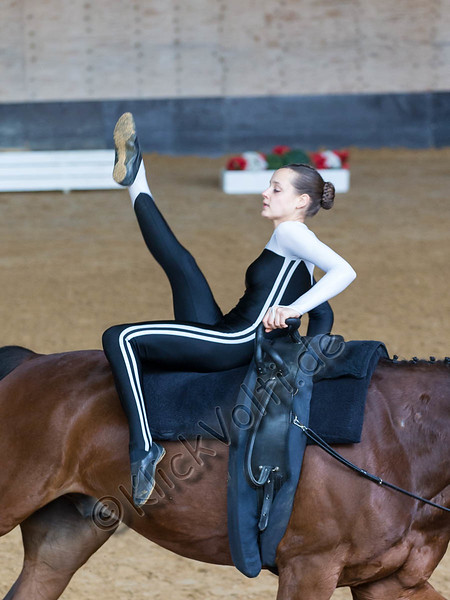 Pferd_Inter_2019_0174_klickvolti