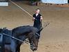 Pferd_Inter_2019_0217_klickvolti