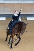 Pferd_Inter_2019_0181_klickvolti