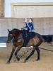 Pferd_Inter_2019_0227_klickvolti