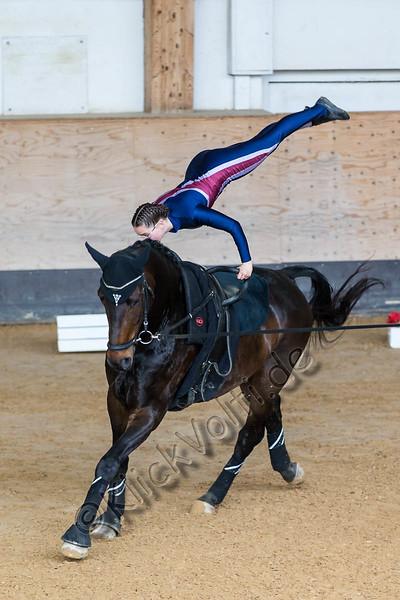 Pferd_Inter_2019_0203_klickvolti