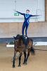 Pferd_Inter_2019_0222_klickvolti