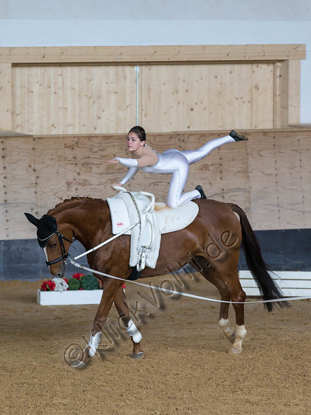 Pferd_Inter_2019_0160_klickvolti