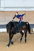 Pferd_Inter_2019_0200_klickvolti