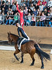 Pferd_Inter_2019_0844_klickvolti