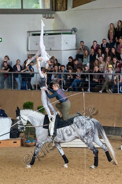 Pferd_Inter_2019_0917_klickvolti