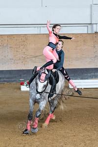 Pferd_Inter_2019_0976_klickvolti